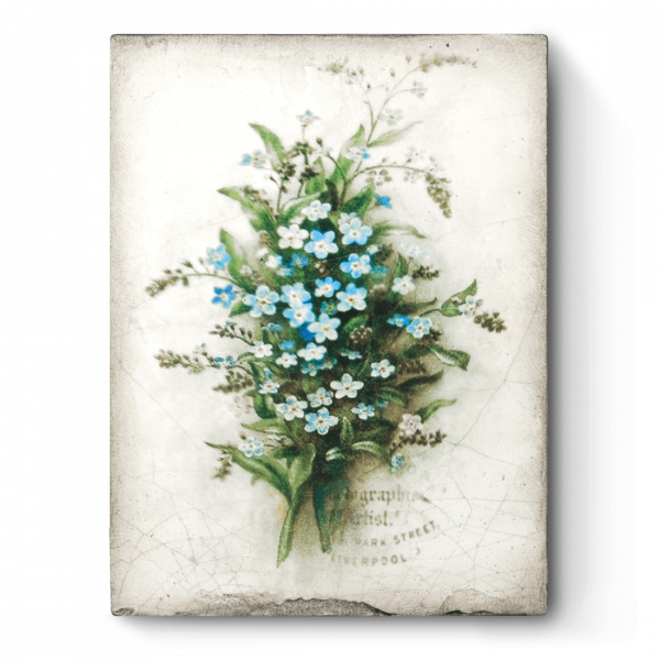 Sid Dickens tableau T444 forget me not-0